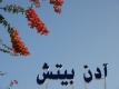 Lastminute Djerba