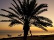 Herfstvakantie Djerba