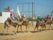 Lastminute Tunesië